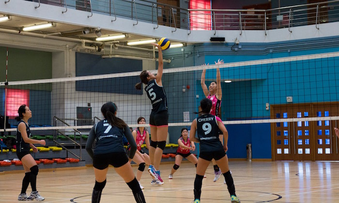 volleyball team sports hong kong