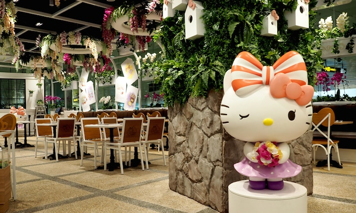 Layover Survival Guide: What to Do in Singapore Changi International Airport
